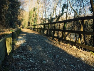 Sentiero del Brenta