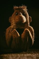 Monkey toy