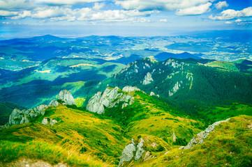 mountain landscape in summer light