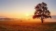 Tree and sun landscape meadow, rural scene