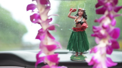 Hula doll dancing and lei - Hawaii travel car