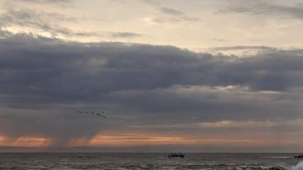 Moody trawler