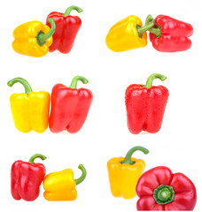 collection of pepper images