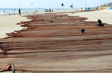 Fishing nets drying on sandy beach of Goa, India