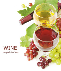 Red and white wine and grapes with fresh leaves