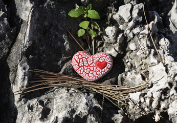 Red Speckled Heart on a Rock.