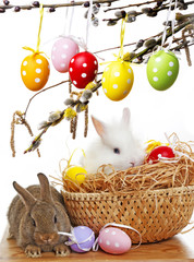 easter rabbits and easter eggs