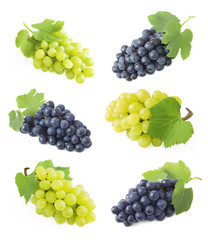 Grapes branches isolated on white