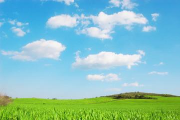 Collina con prato verde e cielo azzurro e nuvole - Pianeta verde