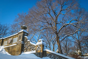 Ornate Wall and Snow