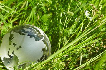 glass globe in the grass