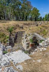 Roman amphitheatre, Syracuse, Sicily ,Italy.