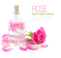 Bottle of essential oil and pink rose isolated on white