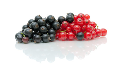 ripe berries black and red currants on a white background with r