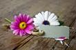 canvas print picture - Blumen auf Holztisch