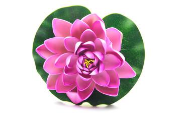 Lotus flower model
