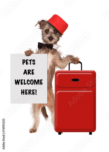 Dog Bellhop Pets Welcome Sign