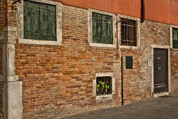 Venezia muro in pietro