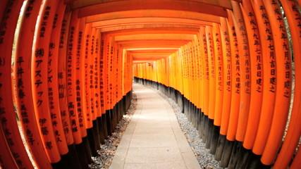 POV Torii gates wide angle  Fushimi Inari Taisha shrine Kyoto Japan