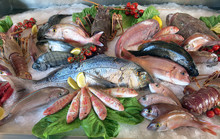 "Постер, картина, фотообои ""great white sea bream many saltwater fish in the italian restaur"""