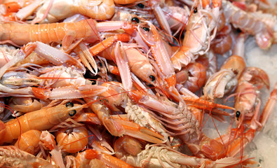 prawns and shrimps in the ice for sale in fish market in souther