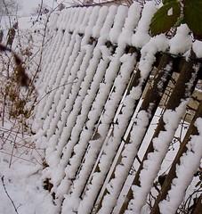 Schneebedeckter Gartenzaun