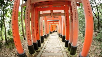 POV Torii gates wide angle  Buddhist temple travel Kyoto Japan