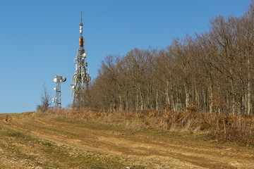 transmitter on the forest background