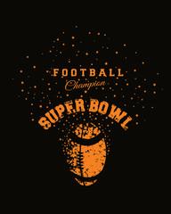 Super Bowl Champions 1