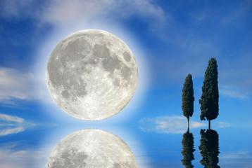 Luna con cipressi