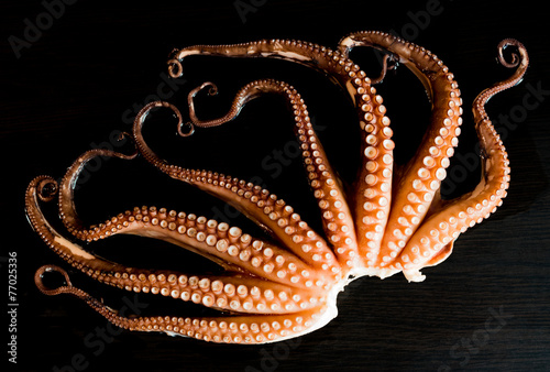 Deurstickers Assortiment Tentacles of boiled octopus on dark table