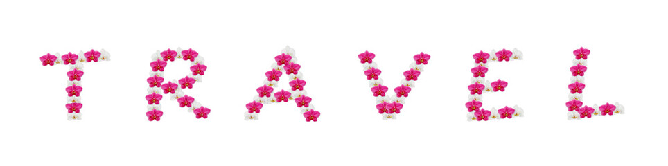 The word Travel spelt out with orchid flowers isolated on white