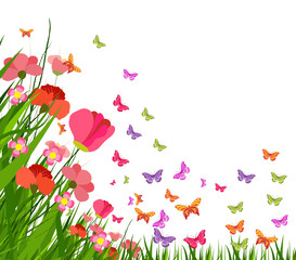 spring flower and butterfly