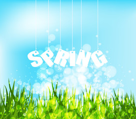 Spring word hanging on a strings background