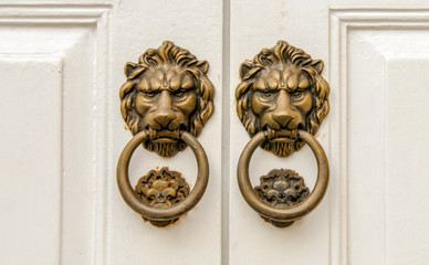 lion - door knocker
