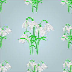 Seamless texture snowdrops spring background vector