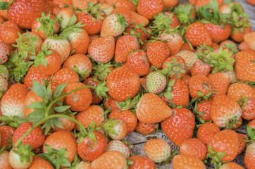 Strawberry of market