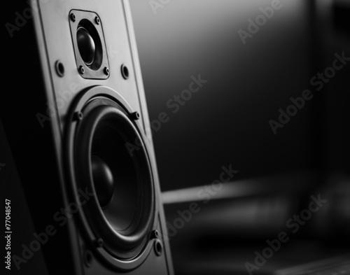 Two way loudspeaker