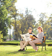 Elderly couple relaxing on a beautiful day in park