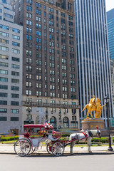 Central Park horse carriage rides in New York