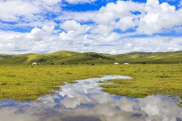 skyline,cloudscape,meadow in tibet