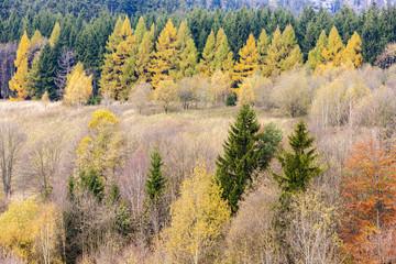 autumnal landscape, Czech Republic