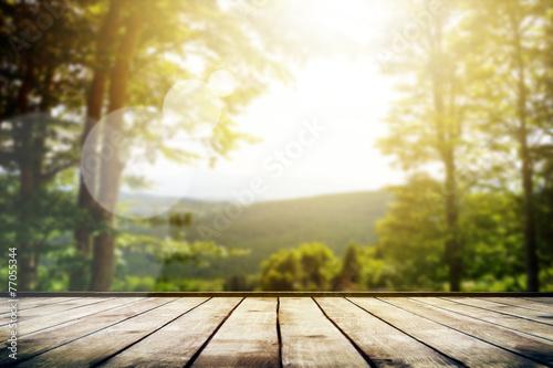 Mountains - 77055344