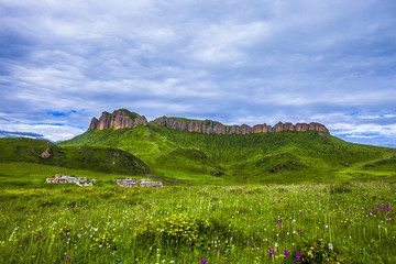 skyline,cloudscape and meadow in tibet highland.