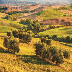 Beautiful sunrise over the Val d'Orcia in Tuscany, natural park