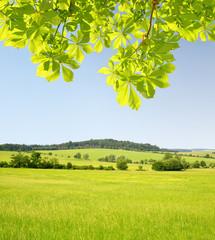 Spring landscape in Czech Republic