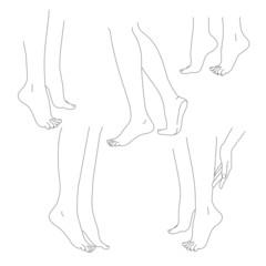 Womans legs female bare feet vector set