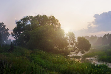 Landscape. Dawn, fog, river