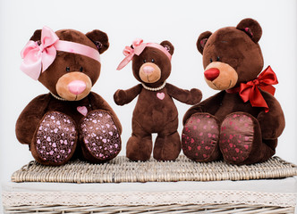 Toy bears family