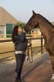 Amico cavallo 17